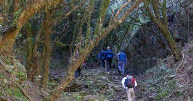 catamarca bosque arrayanes
